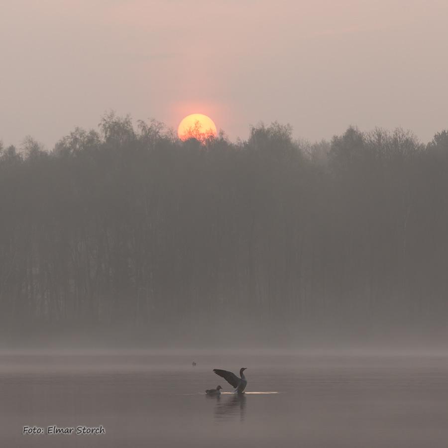 Diergartscher See bei Sonnenaufgang